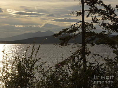 Photograph - Atlin Lake Sunset by Inge Riis McDonald