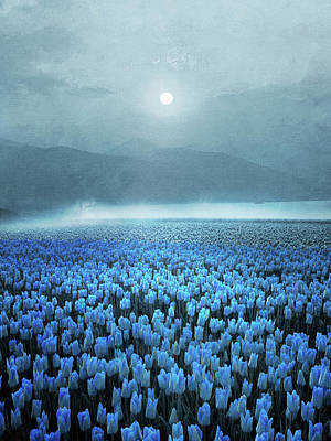 Photograph - Atmospheric Field Of Blue Tulips In by Viviana Gonzalez