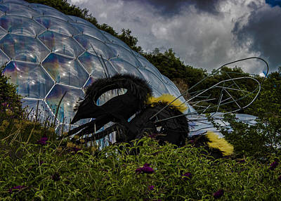 Eden Photograph - Attack Of The Giant Wasp by Martin Newman