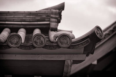 Photograph - Attention To Detail by Brad Brizek