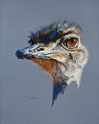 Painting - Attitude Aftican Ostrich by Mary Dove