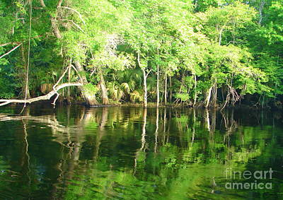 Photograph - Aucilla River Rope Swing by Lew Davis