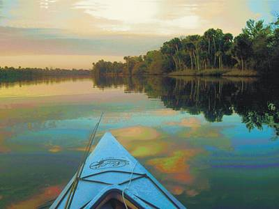 Photograph - Aucilla River Sunrise by Joe Duket