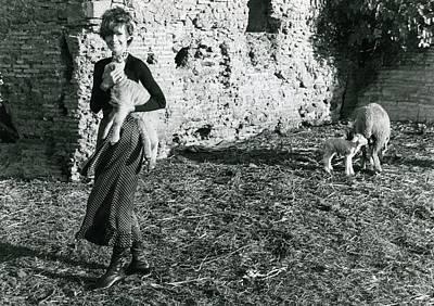 Audrey Hepburn On A Farm Art Print