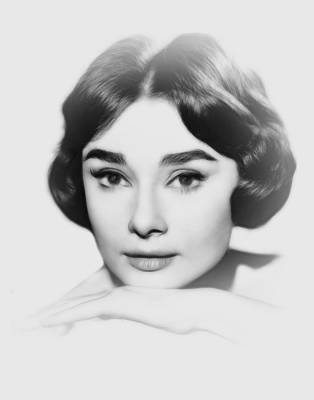 Audrey Hepburn Drawing - Audrey Hepburn Pencil by Steve K