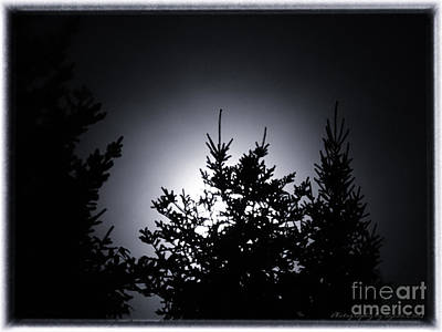 Photograph - August 2014 Super Moon by Gena Weiser