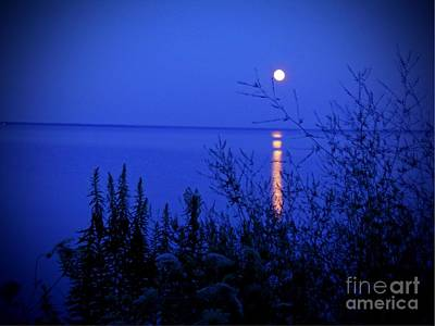 Photograph - August Moonrise by Desiree Paquette