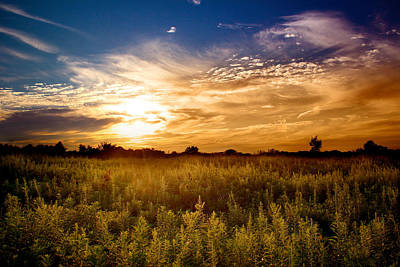 Goldenrod Photograph - August Sunset In The Meadow by Rob Blair