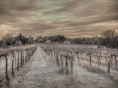 Infared Photograph - Augusta Missouri Winery by Jane Linders