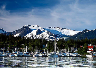 Photograph - Auke Bay Marina by Robert Bales