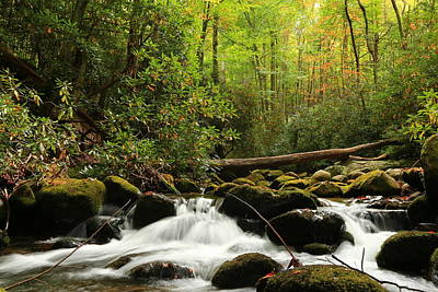 Photograph - Autumn Begins In The Great Smoky Mountain National Park At Roaring Fork Motor Nature Trail Waters by Carol Montoya