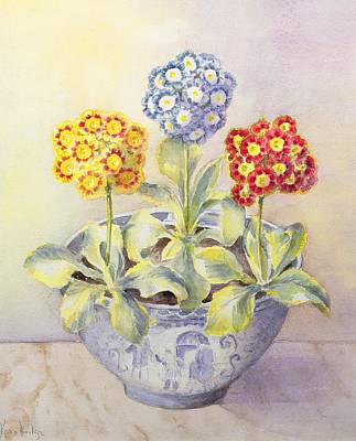 Red And Yellow Painting - Auricula In A Chinese Pot by Karen Armitage