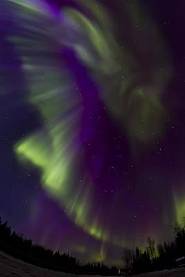 Aurora 4 Original