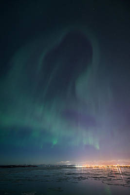 Photograph - Aurora Above Anchorage by Roger Clifford