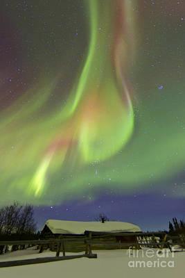 Photograph - Aurora Borealis And Orions Belt by Joseph Bradley