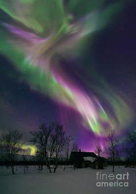 Photograph - Aurora Borealis by Babak Tafreshi