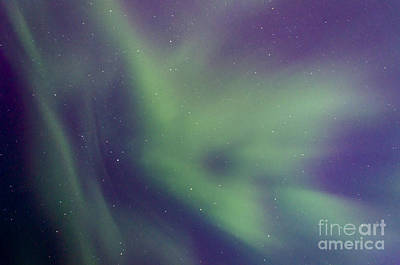 Photograph - Aurora Borealis by Dee Cresswell