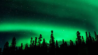 James Lee Photograph - Aurora Borealis Green by James Lee