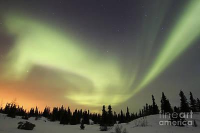 Photograph - Aurora Borealis Over Ogilvie Mountains by Joseph Bradley