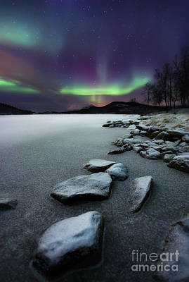 Black And White Horse Photography - Aurora Borealis Over Sandvannet Lake by Arild Heitmann