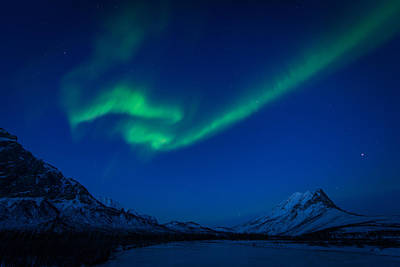 Photograph - Aurora Flare  by Roger Clifford