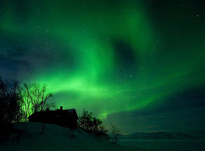 Aurora Over Lake Tornetrask Art Print by Max Waugh