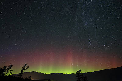 Photograph - Aurora Over Mammoth Hot Springs In Yellowstone by Jean Clark