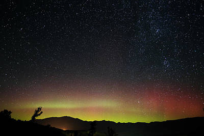 Photograph - Aurora Over Yellowstone by Jean Clark