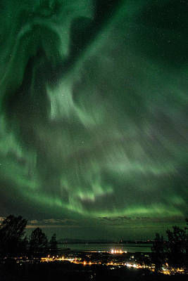Photograph - Aurora Storm In Chugiak by Roger Clifford