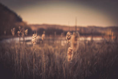 West Virginia Landscape Photograph - Aurous by Shane Holsclaw