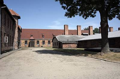 Photograph - Auschwitz - 90 by Rezzan Erguvan-Onal