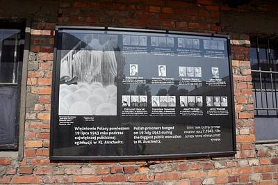 Photograph - Auschwitz - 91 by Rezzan Erguvan-Onal