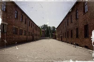 Photograph - Auschwitz - 93 by Rezzan Erguvan-Onal