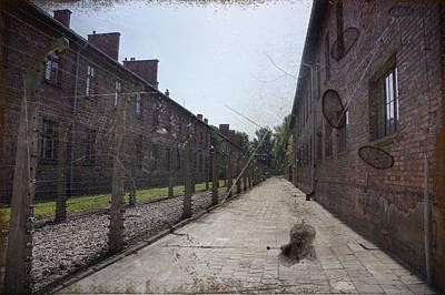 Photograph - Auschwitz - 95 by Rezzan Erguvan-Onal