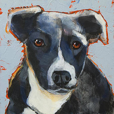 Cattle Dog Painting - Aussie by Mary Medrano