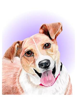 Dog Rescue Mixed Media - Austin Former Shelter Sweetie by Dave Anderson