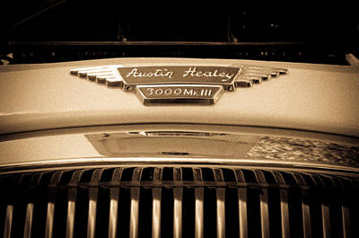 Photograph - Austin Healey by Erin Kohlenberg