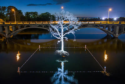 Austin Photograph - Austin Thirst Tree by Tod and Cynthia Grubbs