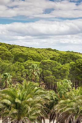 Cellar Photograph - Australia, Barossa Valley by Walter Bibikow