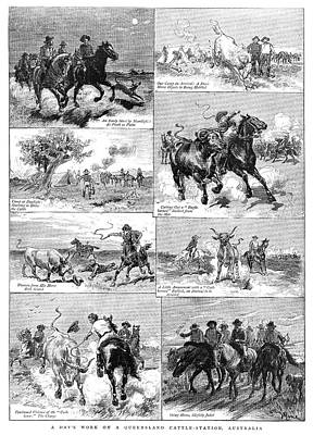Cattle Drive Painting - Australia Cowboys, 1884 by Granger