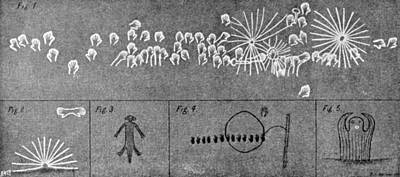 Aborigine Painting - Australian Aboriginal Rock Art Paintings by Science Source