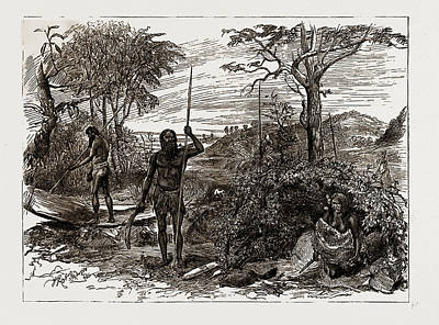 New Zealand Drawing - Australian And New Zealand Exhibits At The Colonial by Litz Collection