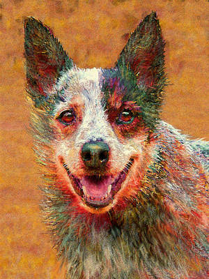 Kelpie Digital Art - Australian Cattle Dog by Jane Schnetlage
