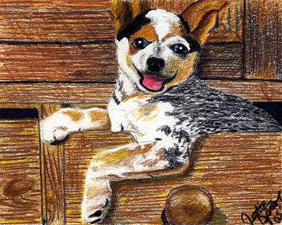 Cattle Dog Drawing - Australian Cattle Dog Puppy by Olde Time  Mercantile