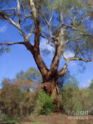 Digital Art - Australian Native Tree 10 by Russell Kightley