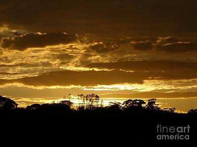 Australian Sunrise Art Print by Bev Conover
