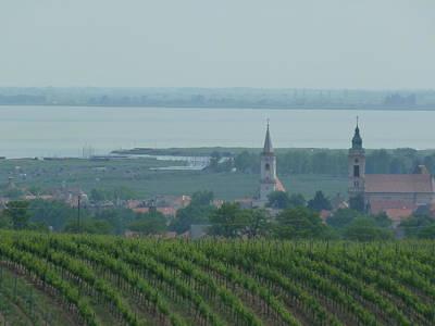 Ben Weinberg Photograph - Austria Burgenland - Neusiedler See Vineyards Village And Lake by Benjamin Weinberg