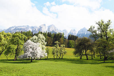 Austrian Landscape In Spring Art Print by Brooke T Ryan
