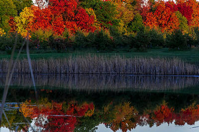 Autum At Orchard Pond Art Print by Gene Sherrill