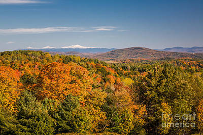 Photograph - Autum Color And Snowy Mountains by Susan Cole Kelly